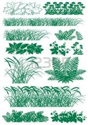 27706320-image-silhouette-de-diffa-rents-types-d-herbes-sur-un-fond-blanc