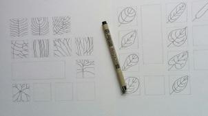 feuillescaracteresmorphologiques3redimensionnee
